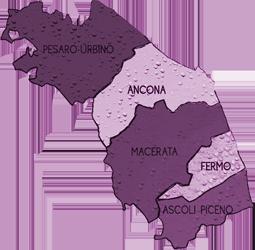mappa MARCHE cartina
