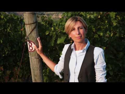 Vini di Romagna - L'eccellenza è un'arte. La schiettezza una garanzia
