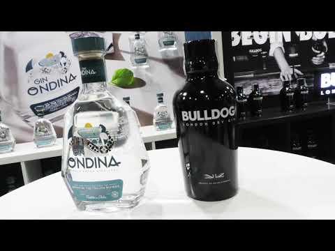 Edoardo Banfi - stand dì Campari - Gin Ondina e Bulldog al theGINDay 2021