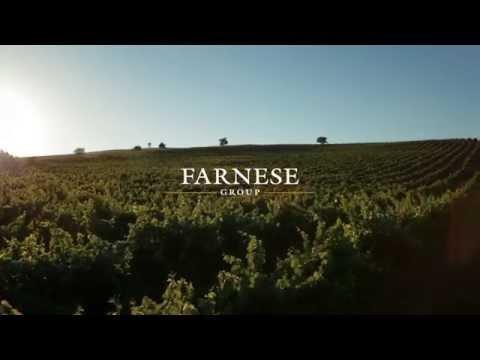 Farnese Vini OFFICIAL VIDEO