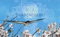 Campagna San benedetto Avvio Primavera Sito