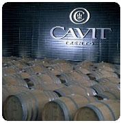 CAVIT  PROTAGONISTA DEL TOUR GAMBERO ROSSO – SLOW FOOD EDITORE PER LA PROMOZIONE DELLA QUALITÀ DEI VINI ITALIANI