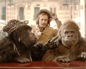 Crodino Gorilla Vittoria Cabello
