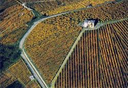 Tre Bicchieri 2013 Gambero Rosso regione Valle d'Aosta: più vini di qualità nonostante gli ostacoli