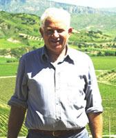 Gambero Rosso Cantina Librandi Cirò Marina Calabria Premio Viticoltore Guida Vini Italia Gambero Rosso