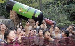 """In Cina le altissime accise sull'import del vino in bottiglia """"pompano"""" il business del vino sfuso che viene poi  imbottigliato in loco"""