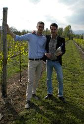 Casa Battistella presenta 'VITAE' Rosso delle Tre Venezie IGP: il primo vino 'funzionale' ad elevato contenuto polifenolico