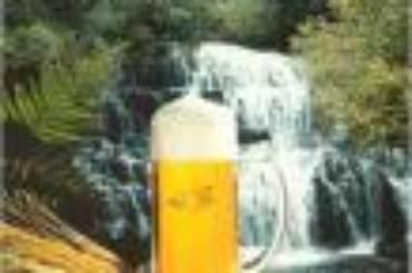 Boccale Birra e Cascata