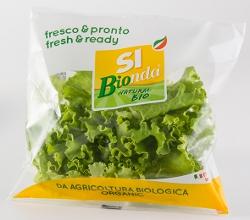 SIPO presenta le insalate biologiche con il nuovo brand SI Bionda