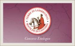 """Concorso Enologico """"MATILDE DI CANOSSA-TERRE DI LAMBRUSCO""""-  Reggio fa la parte del leone con 48 vini e 20 aziende selezionati"""