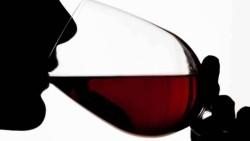 """COLDIRETTI: """"I grandi vini piemontesi sono gioielli dell'export in Europa e nel mondo"""""""