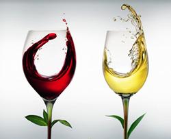 Vini Biologici Vinitaly Vinitalybio Vino Biologico Certificato
