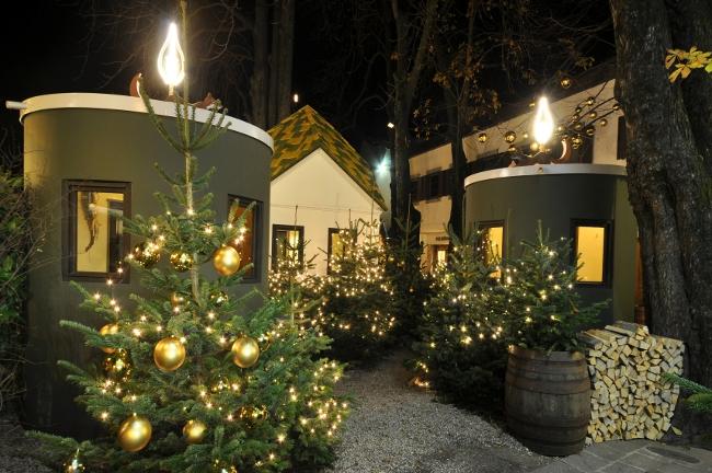 Foresta natalizia