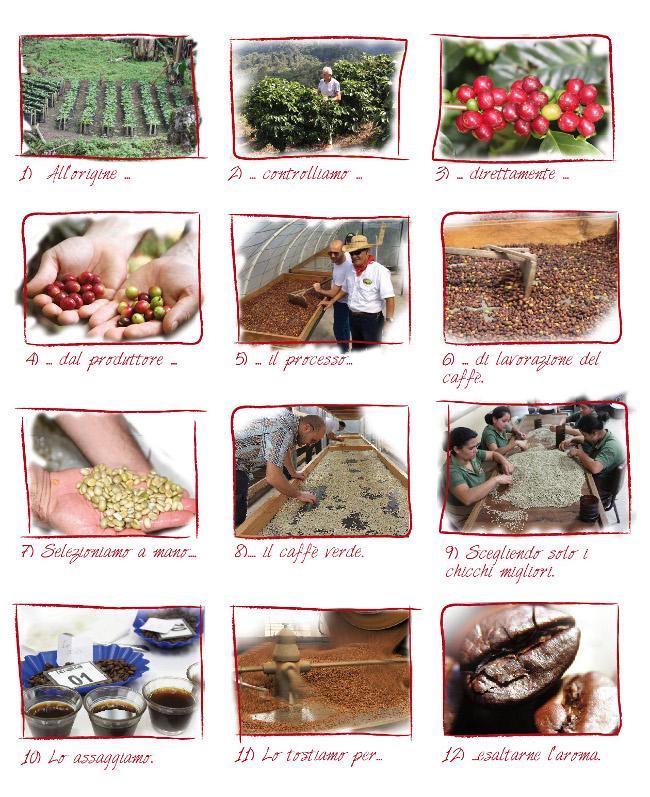 Marca_coffee story board_caffè corsini