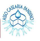 assoCasearia
