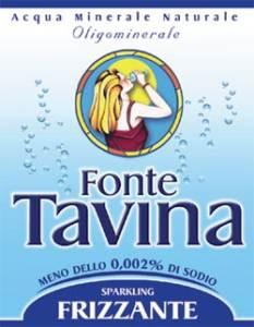 logo TAVINA S.p.A.