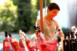 BARDOLINO: le donne primeggiano nella conduzione delle cantine