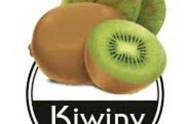 kiwiny logo