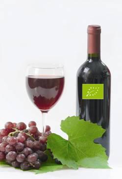 WINE MONITOR: il mercato dei vini biologici in Italia