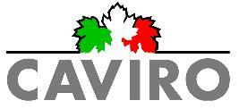 Bilancio CAVIRO 2013: fatturato a € 321 milioni di euro (+13%) e margine operativo lordo a € 20 milioni