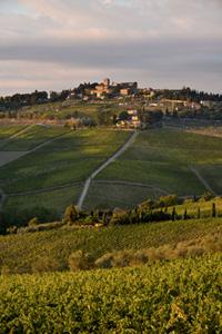 PANZANO IN CHIANTI: è settembre, è tempo di Vino al Vino