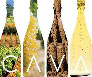 Spumanti CAVA Spagna: il mercato 2013