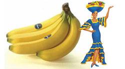 chiquita-bananas