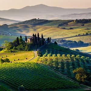 Enoturismo Napa Valley Wine Monitor Possibile Leva Sostenibilità Vino Italiano