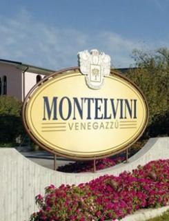 MONTELVINI: nel 2014 fatturato oltre i 21 milioni