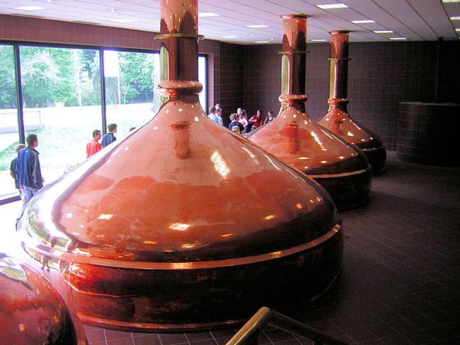impianti fermentazione