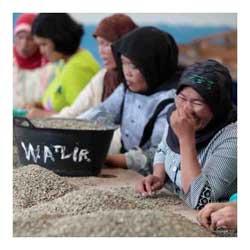Il DALLA CORTE campus vola a Sumatra