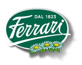 Il GRANA PADANO RISERVA FERRARI viene premiato come il migliore formaggio duro italiano