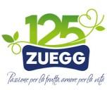 logo zuegg