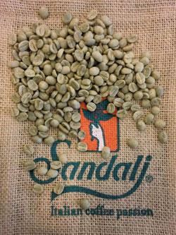 SANDALJ TRADING in esclusiva ad Host con il caffè coltivato dalle donne