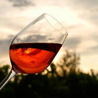 Puntare Giovani Consulta Generazioni Vini Italia Nazionale Viticultura Obiettivo Vino Italiano Consulta Nazionale Del Vino