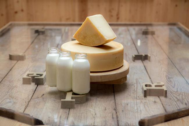 formaggio-San-pietro-in-piccolo