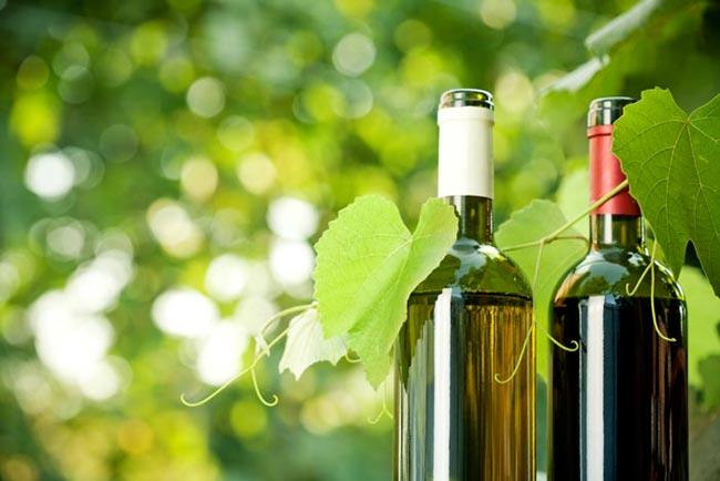 wine-monitor-bottiglie