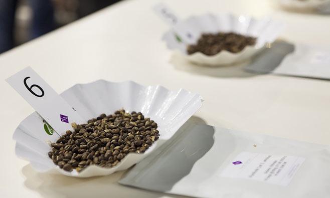 SIC-Salone-Internazionale-Caffe1_DegustazioneCaffee