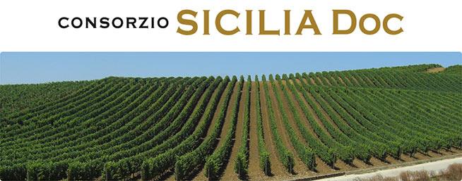 consorzio-vini-doc-sicilia1