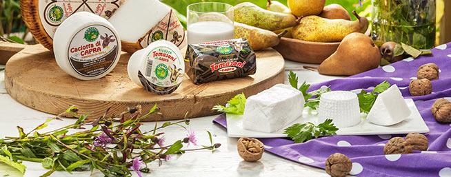formaggi-capra-tomasoni