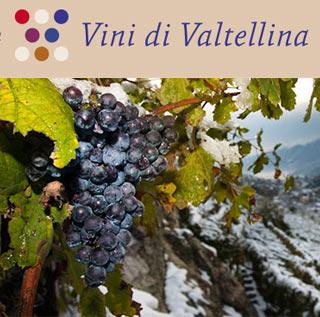 La Valtellina del vino non si nasconde più tra le colline