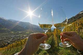 Presentato il nuovo concorso MONDIAL DES VINS EXTREMES, dedicato ai vini di montagna