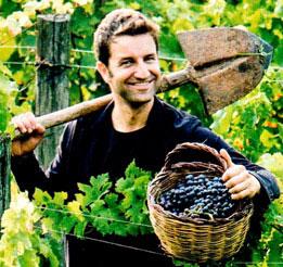 D'UVA: gli innovativi succhi d'uva biologici ottenuti dalla pressatura a freddo dell'uva