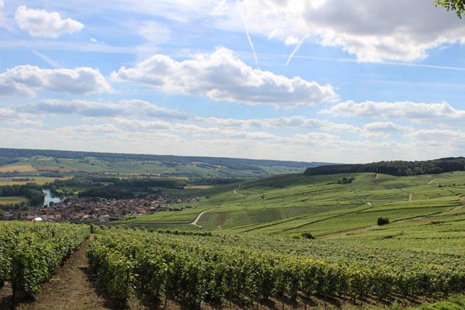champagne-paesaggio-villaggio