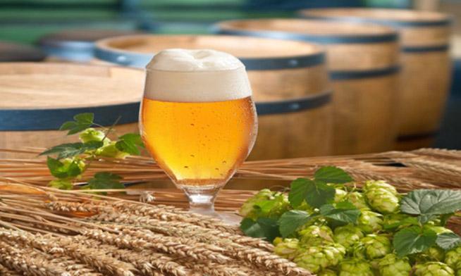 birra-malto-e-luppolo