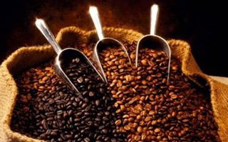ALLARME CLIMA PER IL CAFFÈ: a rischio 50% delle coltivazioni