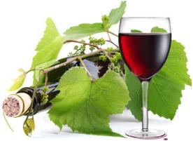 vino naturale bottiglia