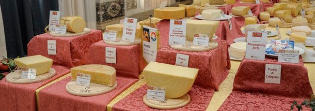 caseus-formaggi