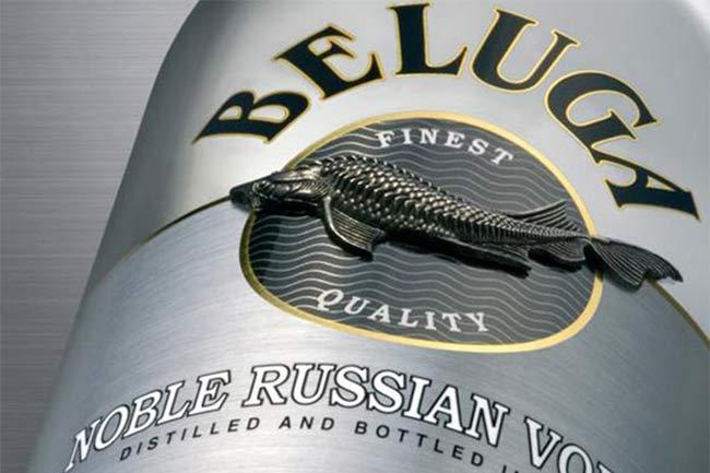 Beluga-adv-1