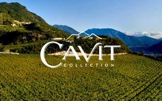 """Cavit presenta i vini novelli """"Fiori d\'Inverno"""" e """"Terrazze della Luna"""""""